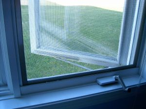 window-screen-2-152156-m