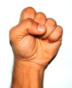 fist-1488296