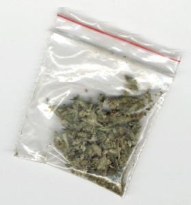 dutch-weed-1251539