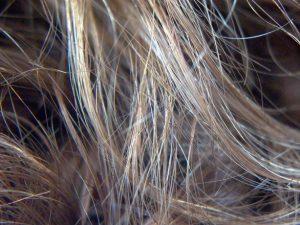hair-1481587