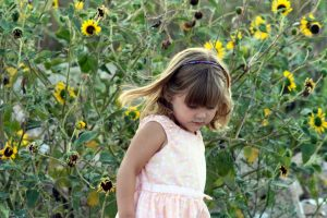 sunflower-child-1436893-300x200